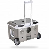 Mobile refrigerator on wheels PG36